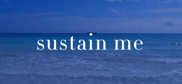 Sustain Me Mark Johnson Dream Motifs Guitar Music